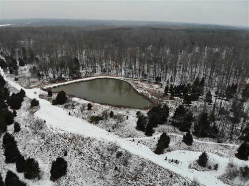 Land For Sale, 43.5 Acres in Brow : Freetown : Brown County : Indiana