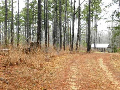 232 Acres on Bull Mountain Creek : Shottsville : Marion County : Alabama
