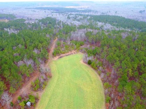100 Acres in Shottsville, Alabama : Shottsville : Marion County : Alabama