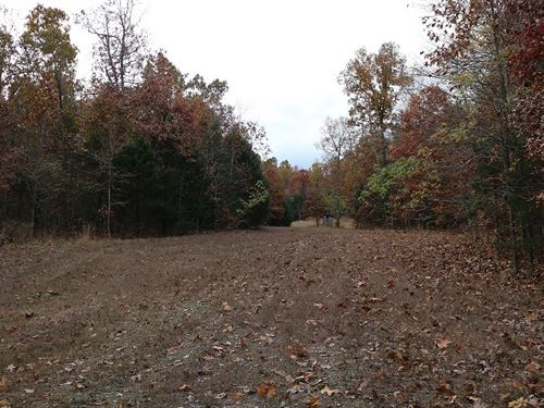 Unfinished Cabin And 80 Acres : Zion : Izard County : Arkansas