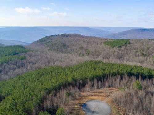Beautiful Views In Marion County : South Pittsburg : Marion County : Tennessee
