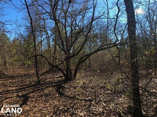 Rolling Oaks 8 Acre Homesite : Blackville : Barnwell County : South Carolina