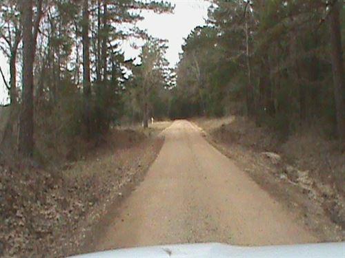 East Texas Recreational, Hunting : Rusk : Cherokee County : Texas