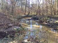 Little Horse Creek Tract : Rutledge : Crenshaw County : Alabama
