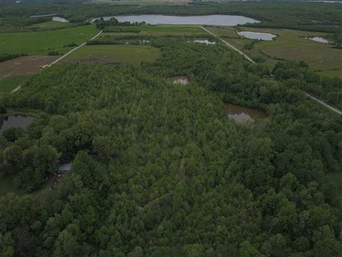 Land For Sale, Pike County, IN : Petersburg : Pike County : Indiana