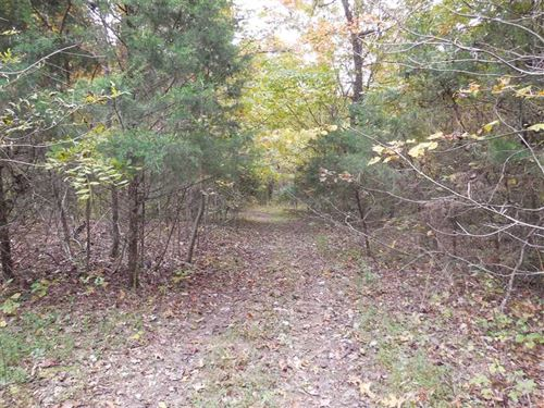 31.7 Acres Larue County, KY : Buffalo : Larue County : Kentucky