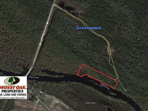 7 Acres of Riverfront Timber And : Atkinson : Pender County : North Carolina