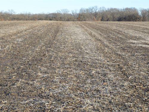 Investment Grade Tillable Farm : Brashear : Adair County : Missouri