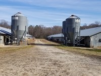 Poultry Farm / Broiler Farm : Cleveland : White County : Georgia