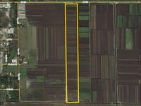 Highlands County Muck Farm : Lake Placid : Highlands County : Florida
