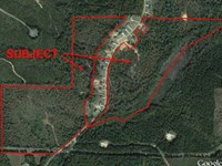 Auction, Property 1207 : Cottondale : Tuscaloosa County : Alabama