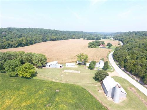 Beautiful Row Crop And Farmhouse : Hillsboro : Jefferson County : Missouri