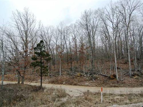 42 Acres For Sale in Williamsville : Williamsville : Butler County : Missouri