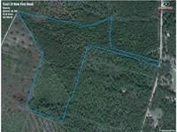 35 Acres Land For Sale Camden : Waverly : Camden County : Georgia
