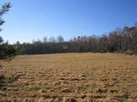 Convenient Country Living : Farmville : Buckingham County : Virginia