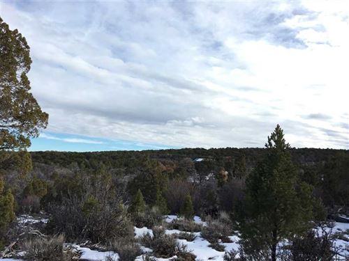 The Ranches at Elk Reserve Lot 21 : Glade Park : Mesa County : Colorado