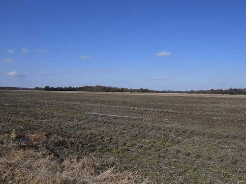 160 Acres Precision Graded Farm LA : Holly Grove : Monroe County : Arkansas