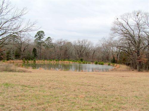 Almost 16 East Texas Acres : Winnsboro : Wood County : Texas