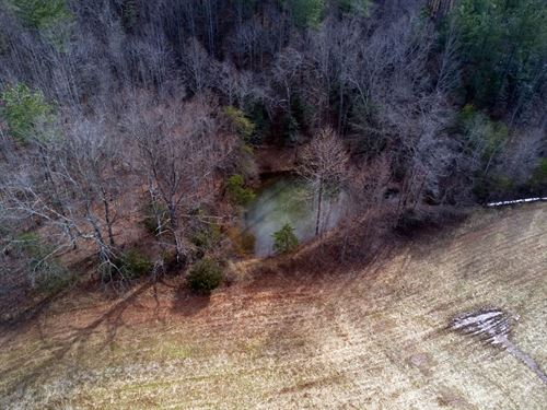 Land For Sale in Dobson : Dobson : Surry County : North Carolina