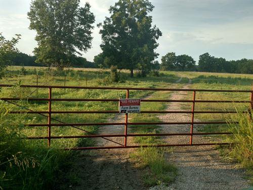 Build Home, Run Livestock Hunt This : Delaware : Nowata County : Oklahoma