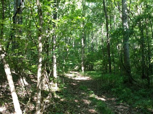 Hamp Slaton, Hunter's Paradise : Tignall : Wilkes County : Georgia