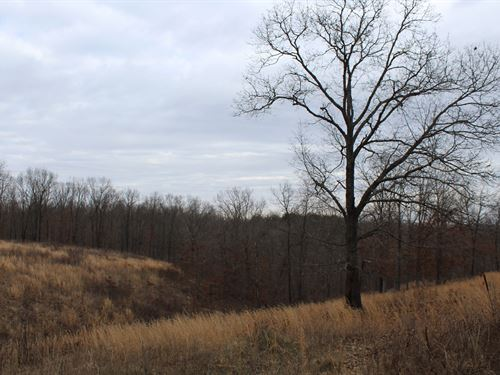 Vacant Land For Sale In The Ozarks : Ava : Douglas County : Missouri