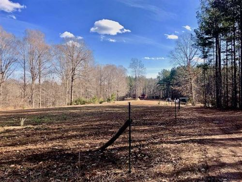 Reduced, 20 Acres of Timber And : Bullock : Granville County : North Carolina