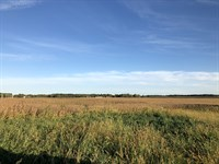 Major Land Auction In Indiana : Hagerstown : Henry County : Indiana