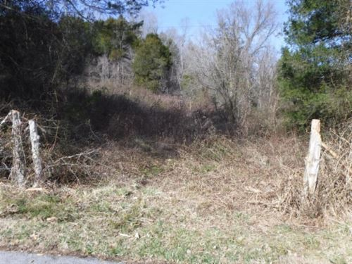 87 Ac, Creek, Pond, Spring, Cave : Burkesville : Cumberland County : Kentucky