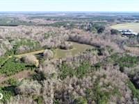 James Farm : Windsor : Bertie County : North Carolina