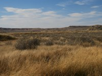 Hall Ranch : Gillette : Campbell County : Wyoming