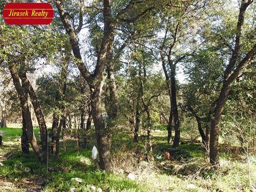 5 Acres, Trees, Belton : Belton : Bell County : Texas