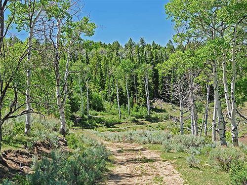 Ier Creek Ranch : Price : Carbon County : Utah