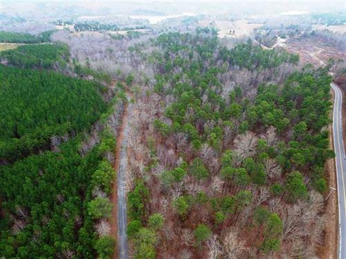 Good Timber And Plentiful Wildlife : Double Springs : Winston County : Alabama