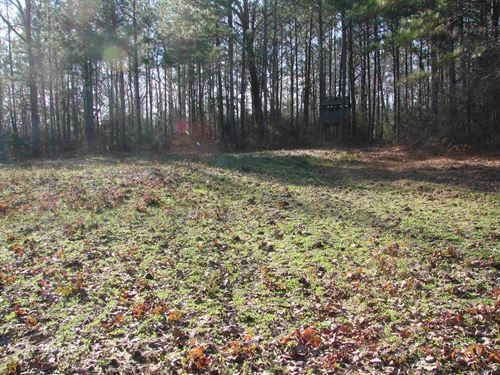 High-Quality Timber Investment : Billingsley : Autauga County : Alabama