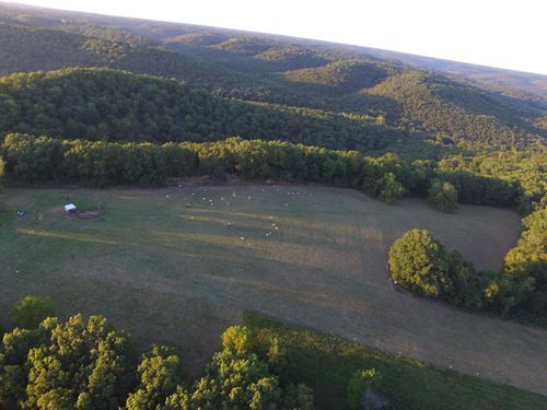 Beautiful Land With A View : Chadwick : Christian County : Missouri