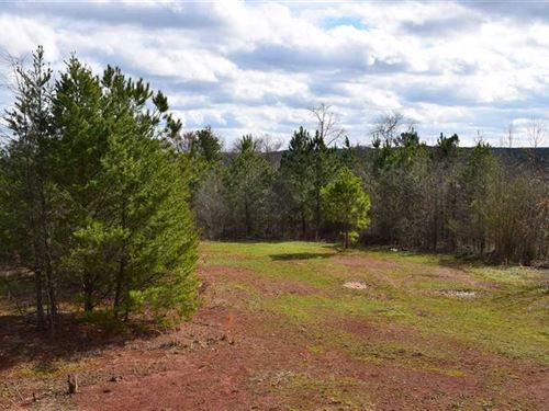 Snow Springs 453 Acres Barto : Adairsville : Bartow County : Georgia