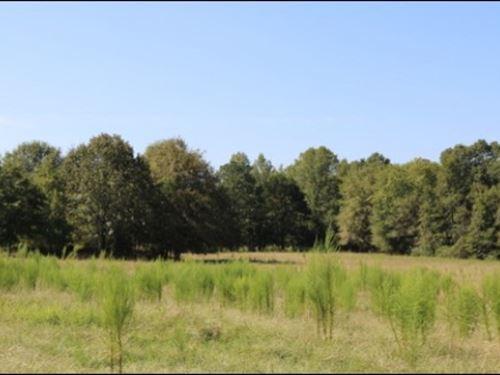 122 Acres In Neshoba County In Phil : Philadelphia : Neshoba County : Mississippi