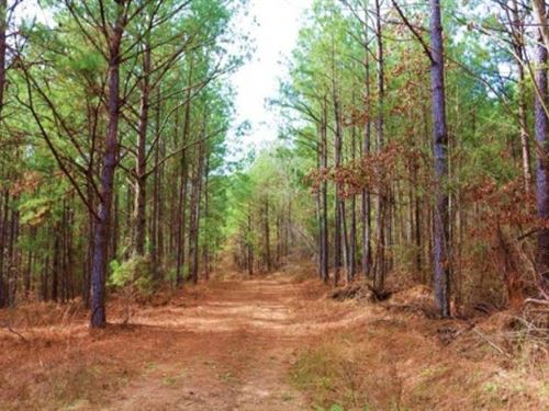 62.5 Acres In Kemper County In DE : De Kalb : Kemper County : Mississippi