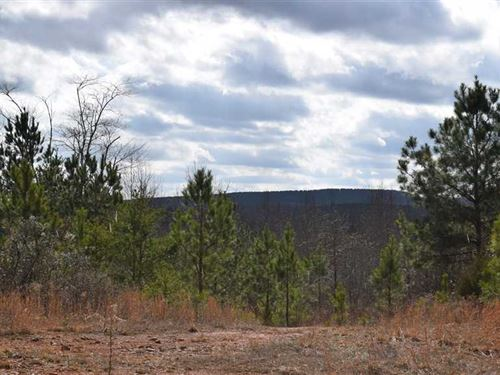 Big Oak Tree Tract 1A 80 Acres : Adairsville : Bartow County : Georgia