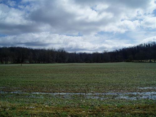Farm Ground Joins Mingo Widlife : Puxico : Stoddard County : Missouri