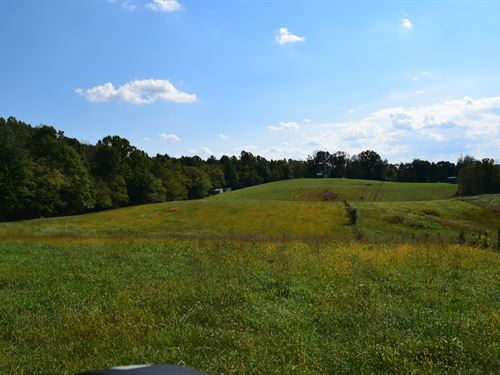 Floyd VA Farm Land For Sale : Floyd : Virginia