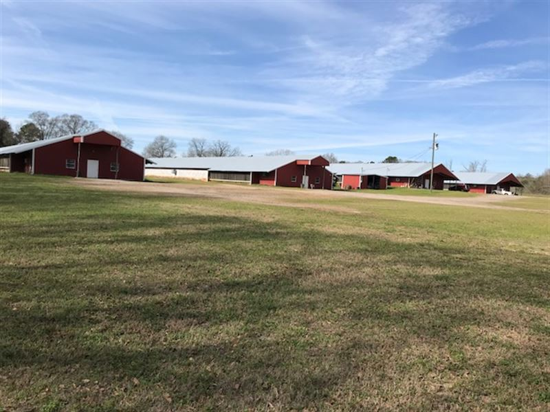 Four Poultry Breeder Houses : Goshen : Crenshaw County : Alabama