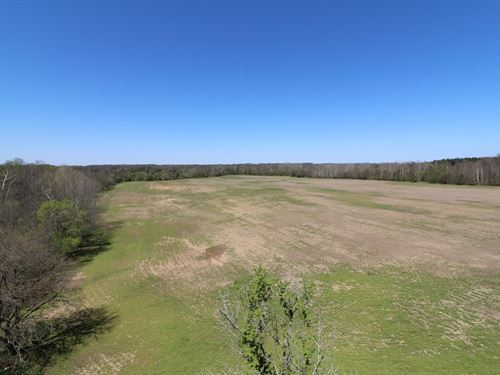 Shaw Rd, 88 Acres : Spencer : Medina County : Ohio