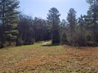 66+/- Acres Usable, Wooded Property : Sweetwater : McMinn County : Tennessee