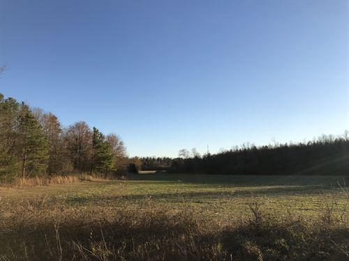 194.38 Ac, Creek, Farmland, Timber : Aragon : Bartow County : Georgia