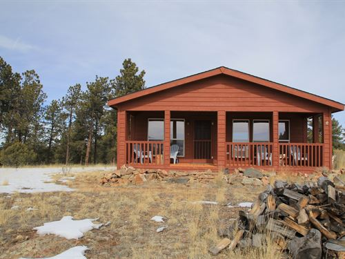 Colorado Cabin Nestled Trees Big : Westcliffe : Custer County : Colorado