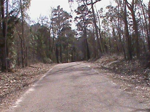 Laneville, Rusk County, TX Land : Laneville : Rusk County : Texas