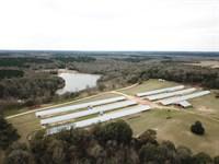 Tarentum Farm-6 House Broiler Farm : Brundi : Pike County : Alabama