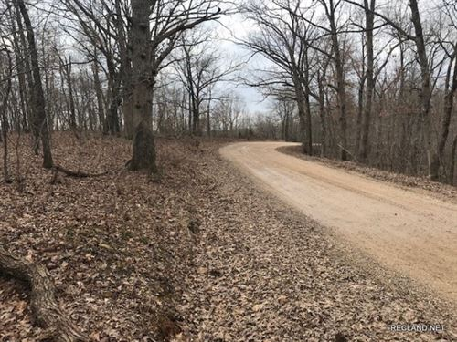 22 Ac, Wooded Home Site Tract : Versailles : Morgan County : Missouri